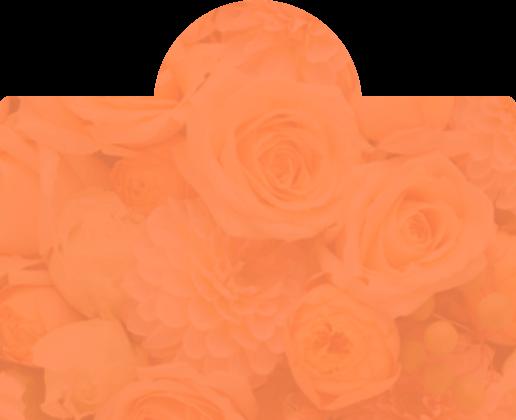 オレンジ色の花の背景